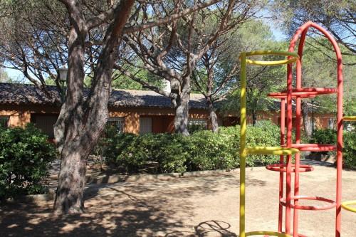 Oncepinos-parque